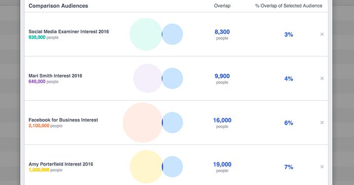 facebook-audience-overlap-8